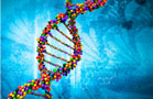 Loxo Cancer Drug Targets Gene Mutation With Durable Responses in Early Study