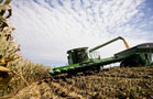 Deere Set to Harvest Profits from Farm Boom
