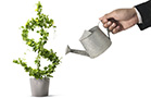 Why Your Gardener Should Be Your Financial Adviser
