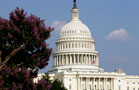 Insider Trading on Capitol Hill: Congress Missed Ethics Session