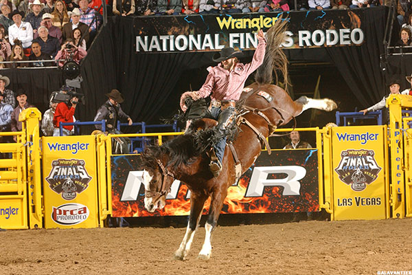 Yee Hah Demand For National Finals Rodeo Tickets At All