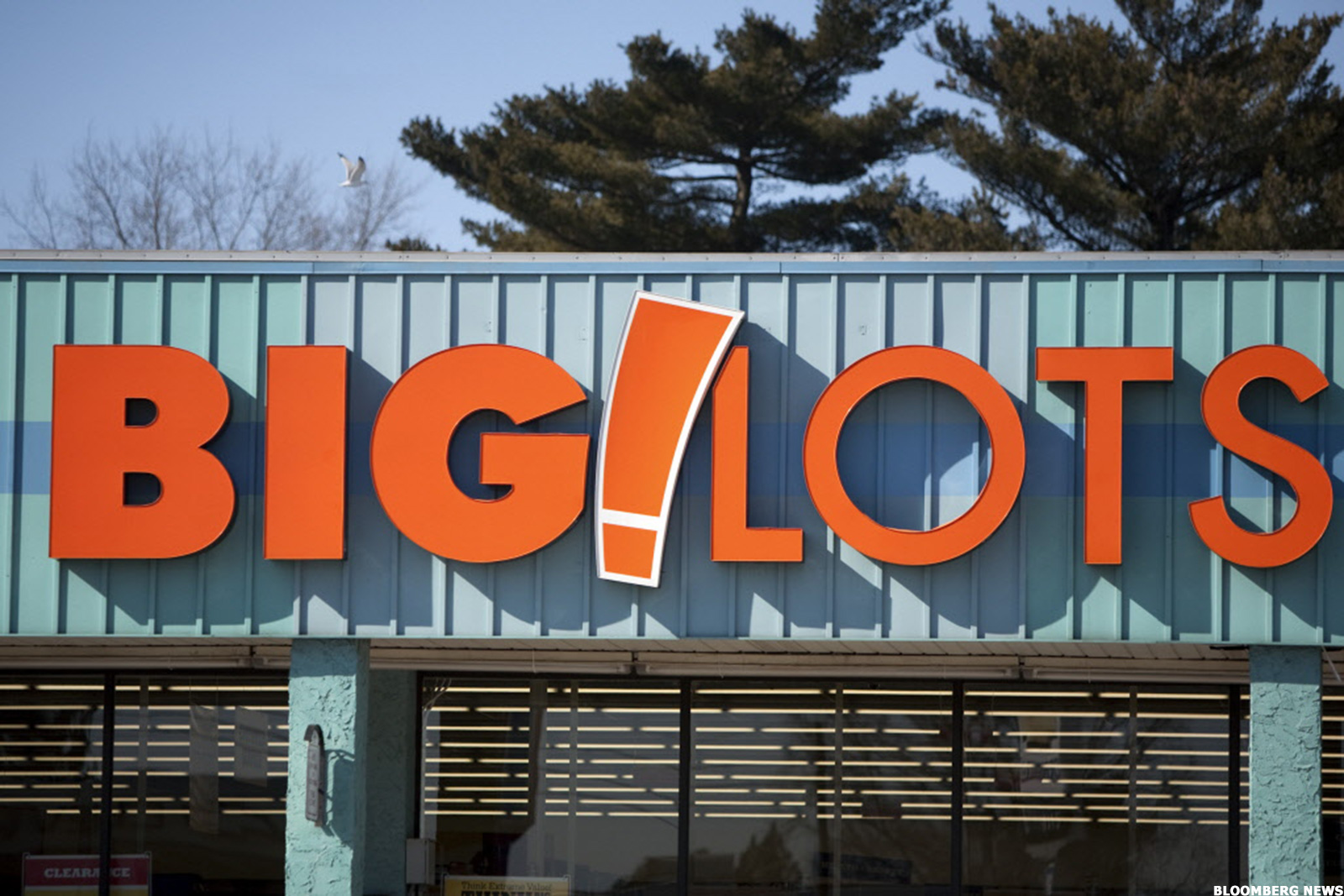May 16,  · Big Lots is your neighborhood quality, discount retailer operating over 1, Big Lots stores in 48 states with product assortments in the merchandise categories of Furniture, Soft Home, Hard Home, Seasonal, Patio, Grocery, Consumables & Electronic Accessories.