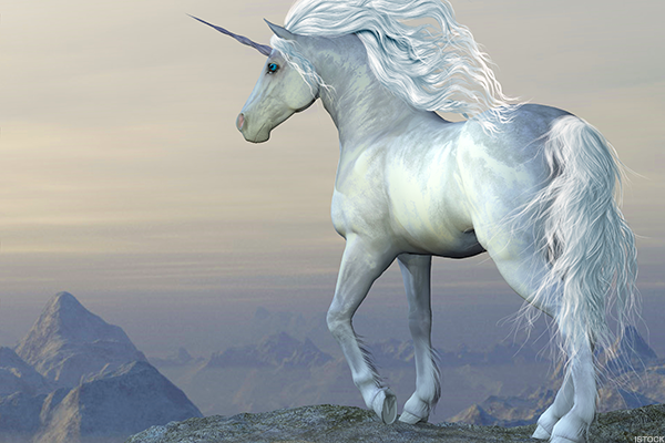 10 Biggest Unicorn Companies in the World - TheStreet