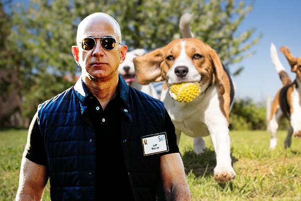 Amazon Is Secretly Becoming a Bank