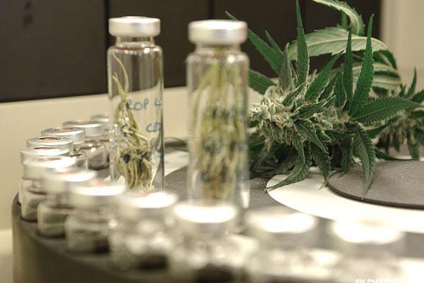 GW Pharmaceuticals PLC- ADR (GWPH) Stock Skyrockets Over Epilepsy Drug
