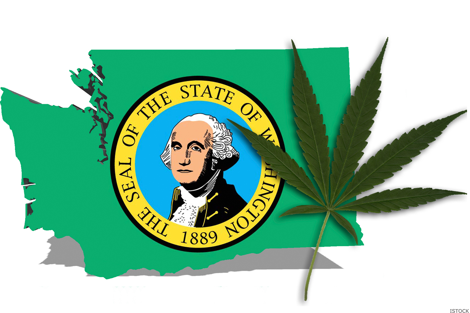 washingtonmarijuana.jpg