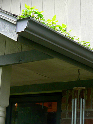 how to clean gutters and downspouts