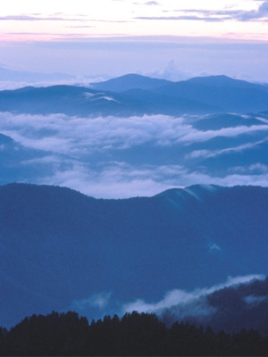 3rd: Great Smoky Mountains National Park