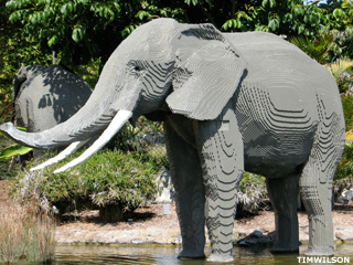 dating turkish woman