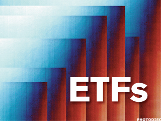 Stock ETFs That Haven't Slumped Despite the Cliff