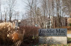 Fannie and Freddie Keep Flying High: Financial Winners (Update 1)