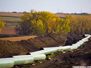 7 Stocks Cheering the Keystone Pipeline's Demise