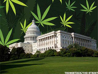 How the U.S. Government Makes Money on Cannabis
