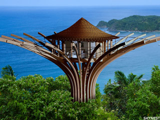 luxurious tree house world's when luxury hotels bore you climb tree and get room service