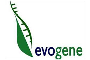 Evogene IPO Sprouts Higher