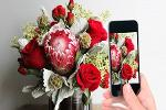 BloomNation – the 'Etsy of Flowers' Takes on Big Players