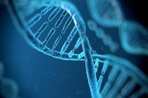 Voyager Therapeutics' Gene Therapy Shows Early, Promising Results
