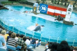 5 Entertainment Companies Probably Stealing Seaworld's Dismal Sales