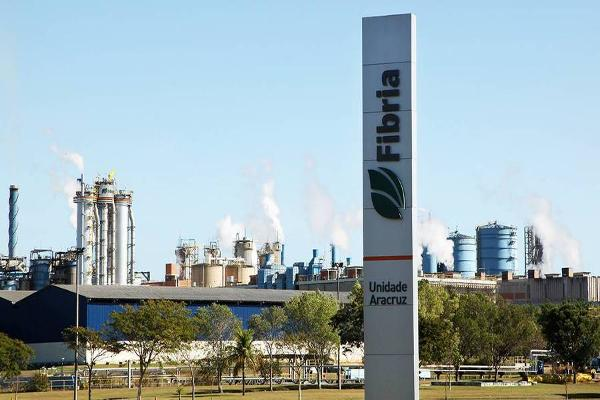 Brazilian Pulp Producer Fibria Gets a Tailwind From Weak Real