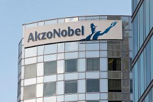 Akzo Nobel Shareholders Are Taking the Company to Court to Remove Chairman Antony Burgmans