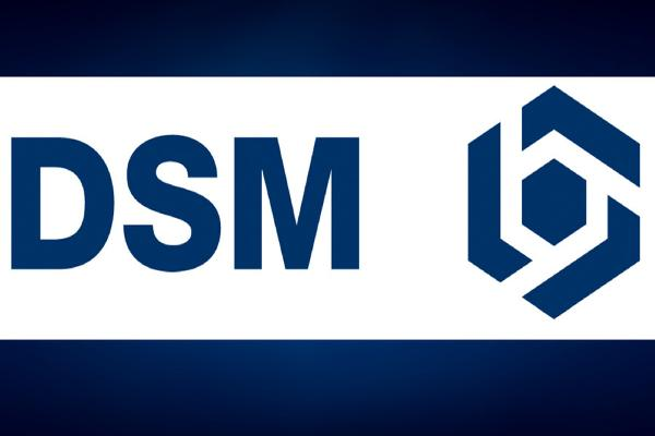 Royal DSM: EU Slow, EM Growing