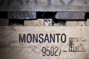 Monsanto Shares Climb on Report of Constructive Bayer AG Takeover Talks