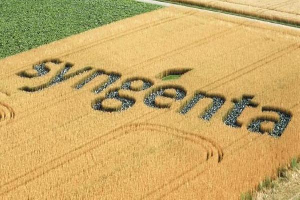 Syngenta Shares Climb as Committee on Foreign Investment Clears Takeover Hurdles