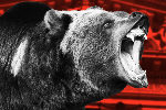 A Hungry Grizzly Bear Is Stalking the Stock Market