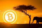Zimbabwe and Bitcoin Remain Entwined; Microsoft's Holiday Wish List -- ICYMI