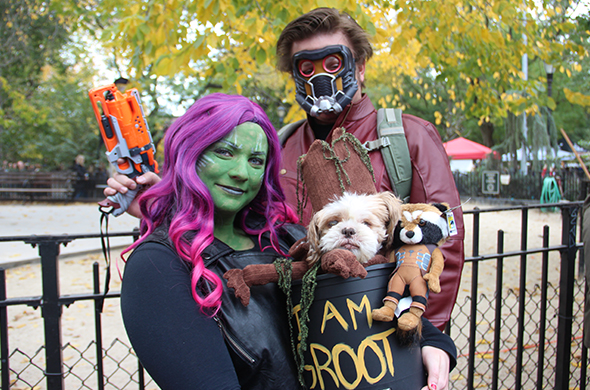 Costume Baby Groot Gamora and Star-Lord from Disneyu0027s Guardians of the Galaxy movie based on the Marvel Comics superhero team.  sc 1 st  TheStreet & 17 Adorable Dog Costumes From Donald Trump to the Real Dracula ...