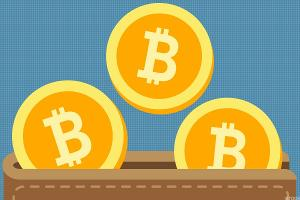 Cryptocurrency in Focus: Bitcoin