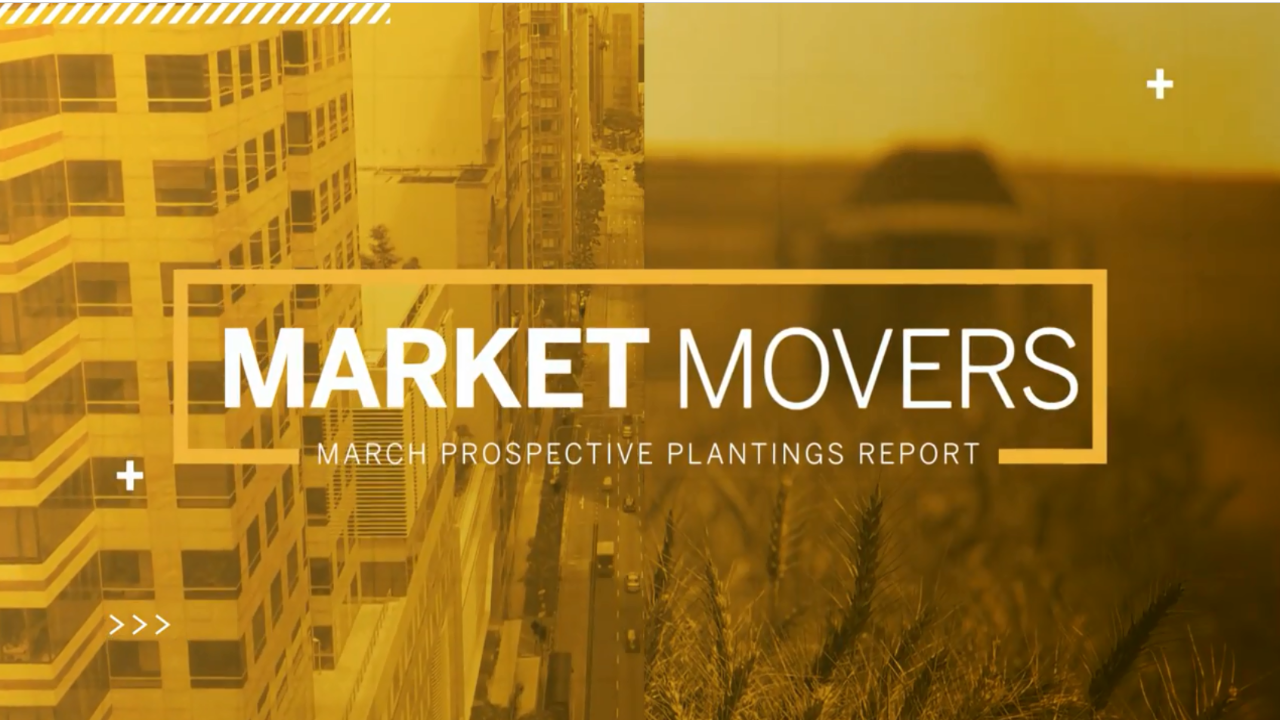 Market Movers: March Prospective Plantings