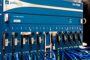 Palo Alto Networks Perks Up