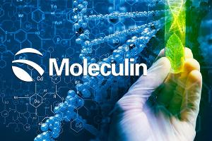Moleculin Biotech gets good verbal Ok from FDA which should cut time to Phase 1/2 trial down