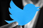 Twitter Soars on Elliott Stake: Where's the Blue Bird Headed Next?