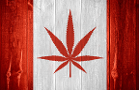Canada's Hexo Pursues Additional JV Cannabis Deals After Molson