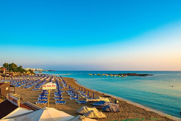 22. Fig Tree Bay