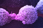 Novartis Secures Prostate Cancer Treatment With Endocyte Deal
