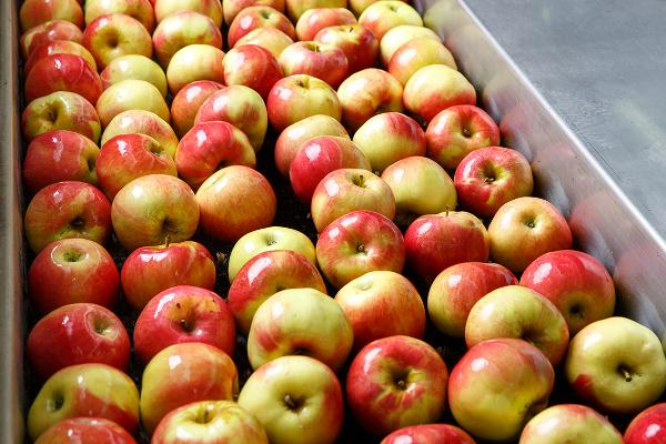 4. Apples
