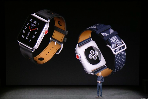 'The [Apple] watch isn't the phone. It's a much more minor line item for the world's largest company.'