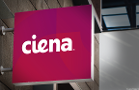 Ciena Corp. May Keep You on Hold a Bit Before Rising Up