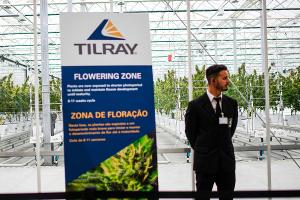 Tilray Gets Buried After Wider Loss but Piper Jaffray Remains Bullish Long-Term
