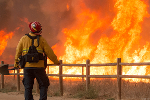 Update on Wine Country Fire, Devastation, Harvest And Economic Impact