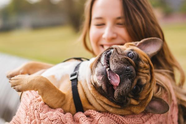 The Most Pet-Friendly Cities in the U.S.