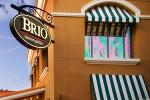 Activist TAC Eyes Director Battle at Eatery Bravo Brio