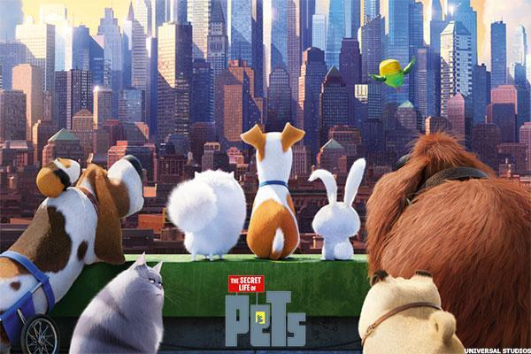 Comcast (CMCSA) Stock Trades at All-Time High on 'Secret Life of Pets'