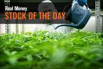 Tilray Surges Over 50% Wednesday Morning Punishing Short-Sellers