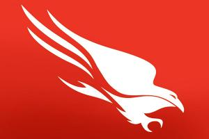 CrowdStrike Shares Surge on Strong First Earnings Report