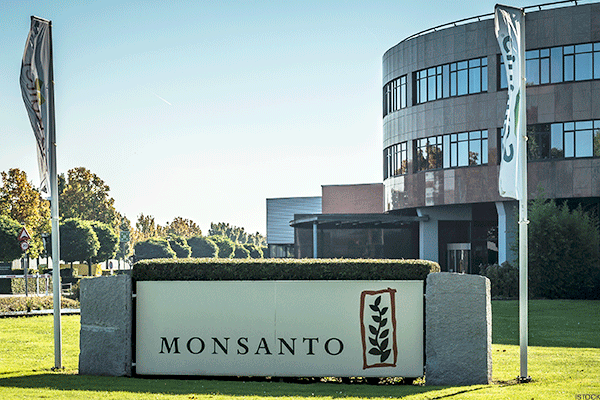 Monsanto Facing Class-Action Lawsuit over Labor Standards