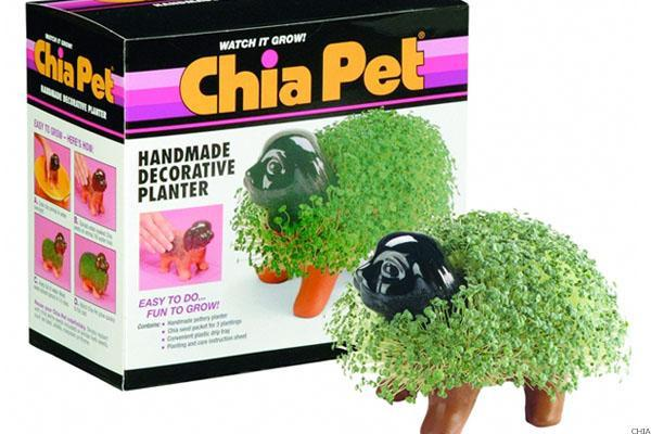 Why Yum! Brands CFO Gives Employees Free Chia Pets